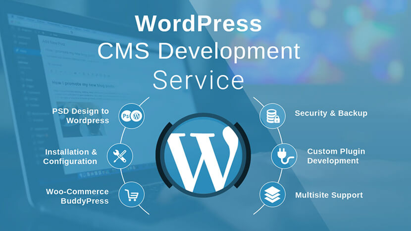Best Wordpress Website Development Service Provider Company in India